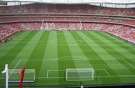 האם איצטדיון הוא מקום בטוח לילדים?
